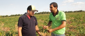 Prefeitura disponibiliza técnicos agrícolas para monitoramento do plantio